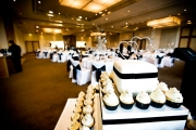 wedding-photography-racv-healesville-0481